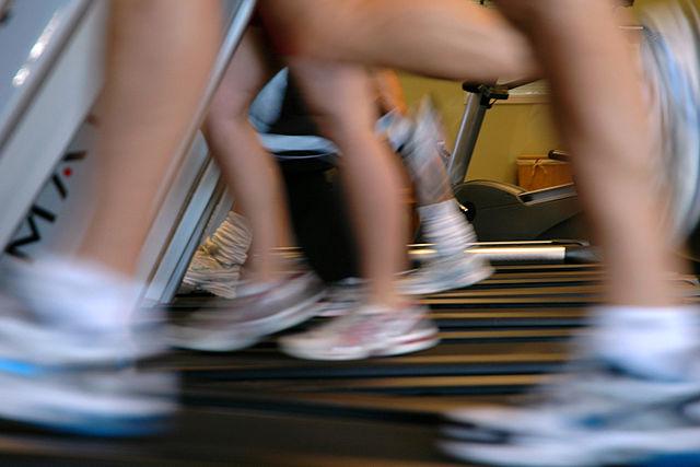 Treadmill Training!