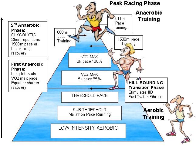 Lydiard Training Pyramid